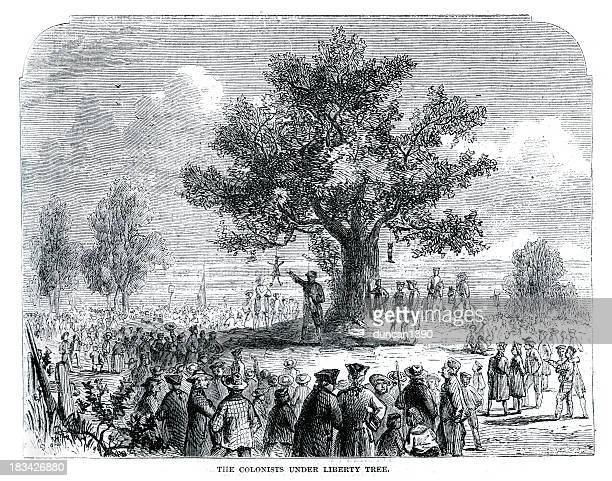colonists under the liberty tree - colonial style stock illustrations