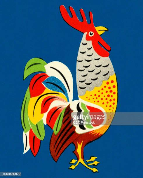colorful rooster - one animal stock illustrations