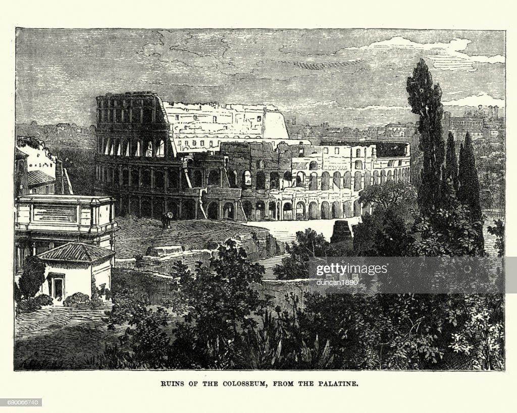Colosseum, Rome : stock illustration
