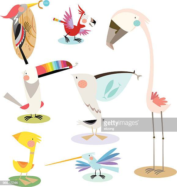 colourful birds - flamingo stock illustrations, clip art, cartoons, & icons