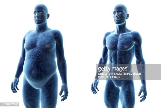 comparison of a fit and obese male, illustration - conversion sport stock illustrations