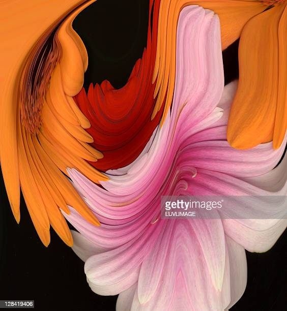 composition of three flowers in manipulation - digital enhancement stock illustrations