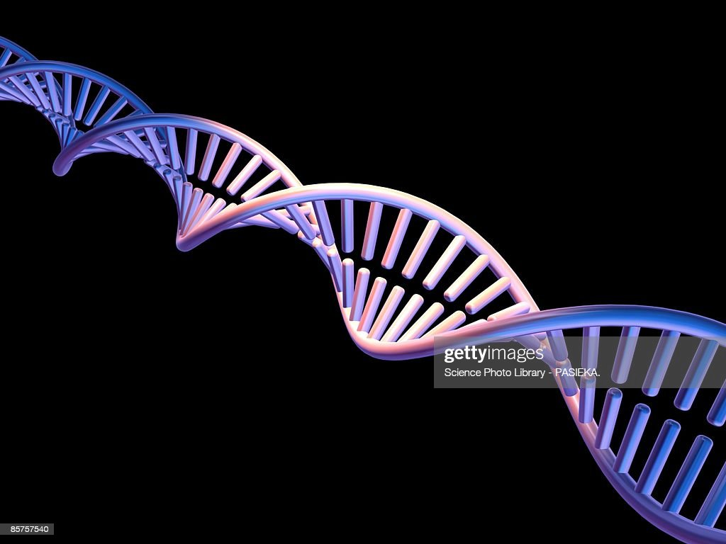 Computer artwork of DNA molecule : stock illustration