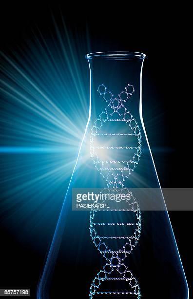 ilustraciones, imágenes clip art, dibujos animados e iconos de stock de computer artwork of part of a dna molecule in a conical flask - material de vidrio de laboratorio