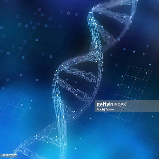 computer representation of dna chain - technology stock illustrations