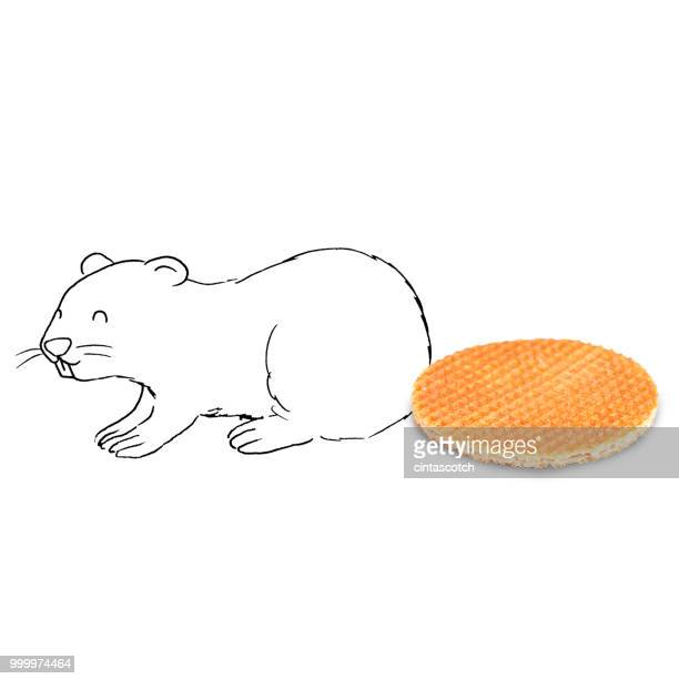 conceptual beaver - waffle stock illustrations, clip art, cartoons, & icons
