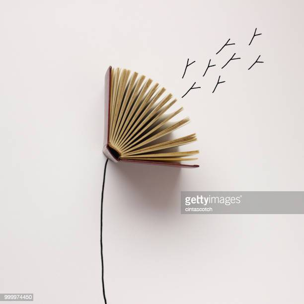 conceptual dandelion seeds blowing from a dandelion clock - book stock illustrations