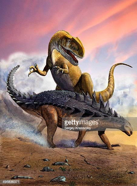 confronation between a neovenator allosaurid and a polacanthus armored dinosaur during the early cretaceous period. - scute stock illustrations, clip art, cartoons, & icons