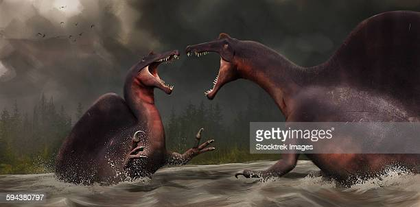 Confrontation between two Spinosaurus aegyptiacus.