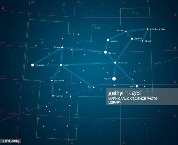Constellation Leo, illustration