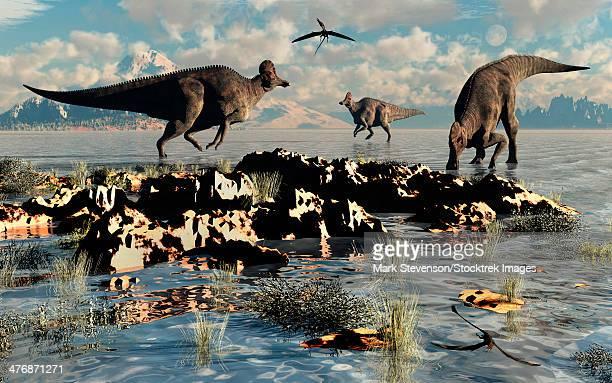 corythosaurus duckbill dinosaurs at a watering and feeding ground. - corythosaurus stock illustrations, clip art, cartoons, & icons