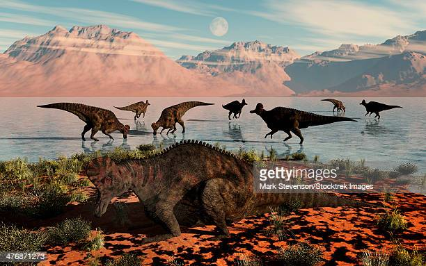 corythosaurus duckbill dinosaurs at a watering and feeding ground. - hadrosaurid stock illustrations, clip art, cartoons, & icons
