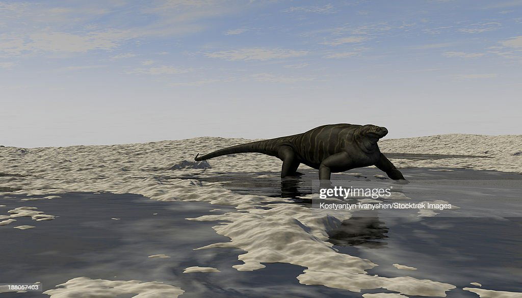 A Cotylorhynchus along the shores of a prehistoric environment. : stock illustration