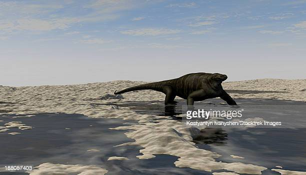 A Cotylorhynchus along the shores of a prehistoric environment.