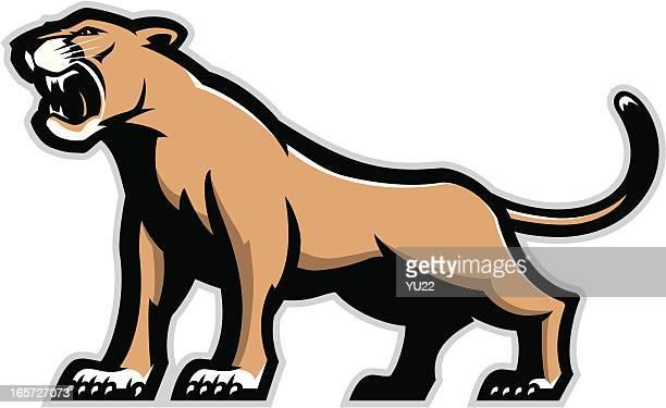 ilustraciones, imágenes clip art, dibujos animados e iconos de stock de mascota de puma - puma