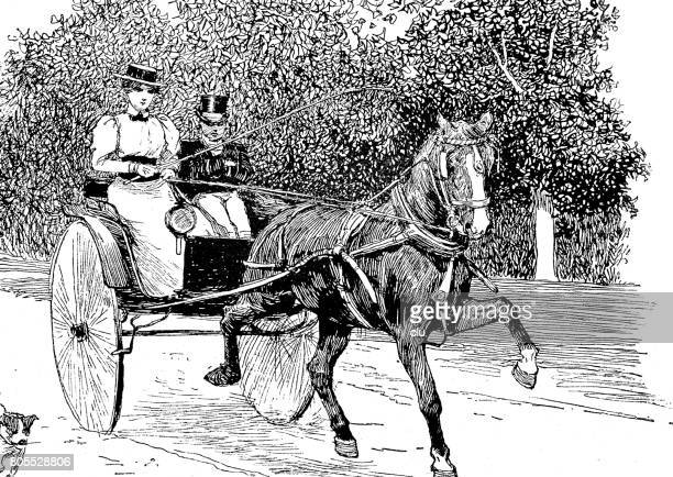 coule sitting on an open horse carriage, woman's directing the horse - horsedrawn stock illustrations, clip art, cartoons, & icons