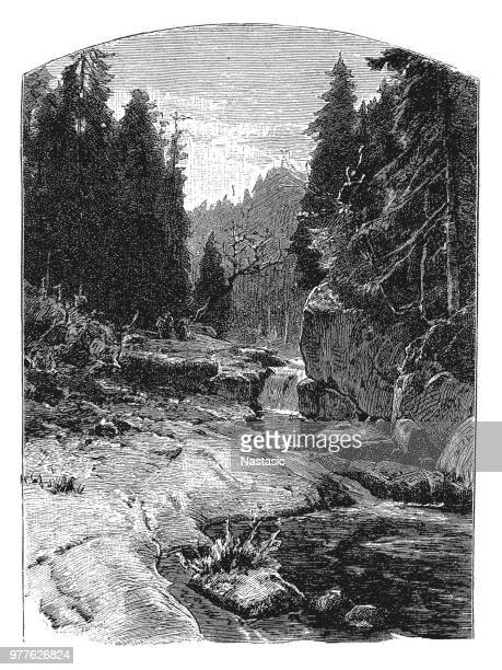 countryside scene, mountain stream rocks and trees - rapid stock illustrations