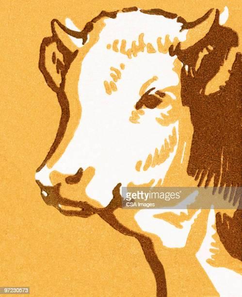 cow - 牛肉点のイラスト素材/クリップアート素材/マンガ素材/アイコン素材