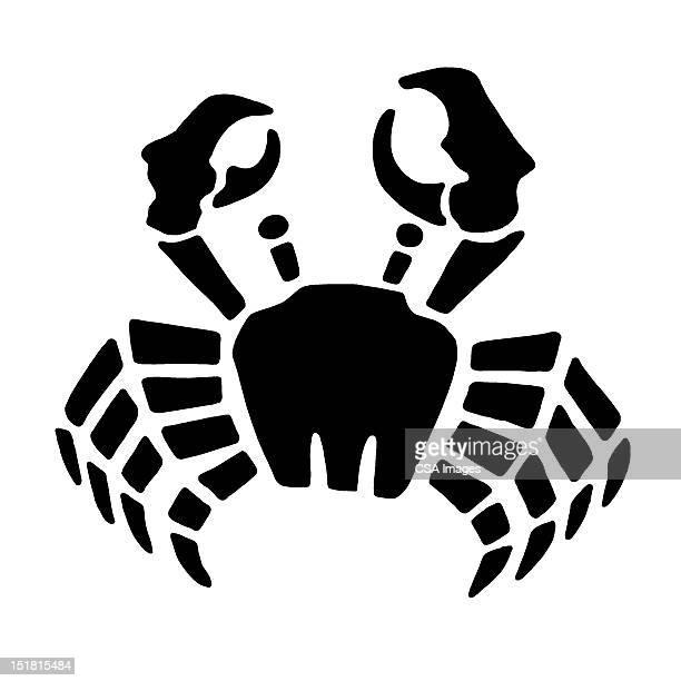 illustrations, cliparts, dessins animés et icônes de crab - crabe
