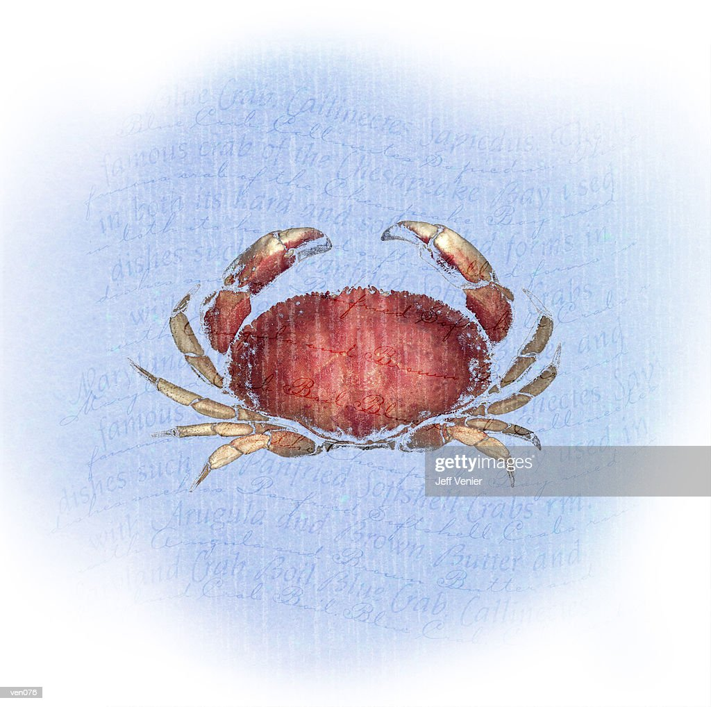 Crab on Wavy Descriptive Background : Stock Illustration