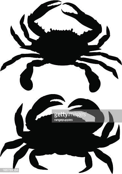crabs - blue crab stock illustrations