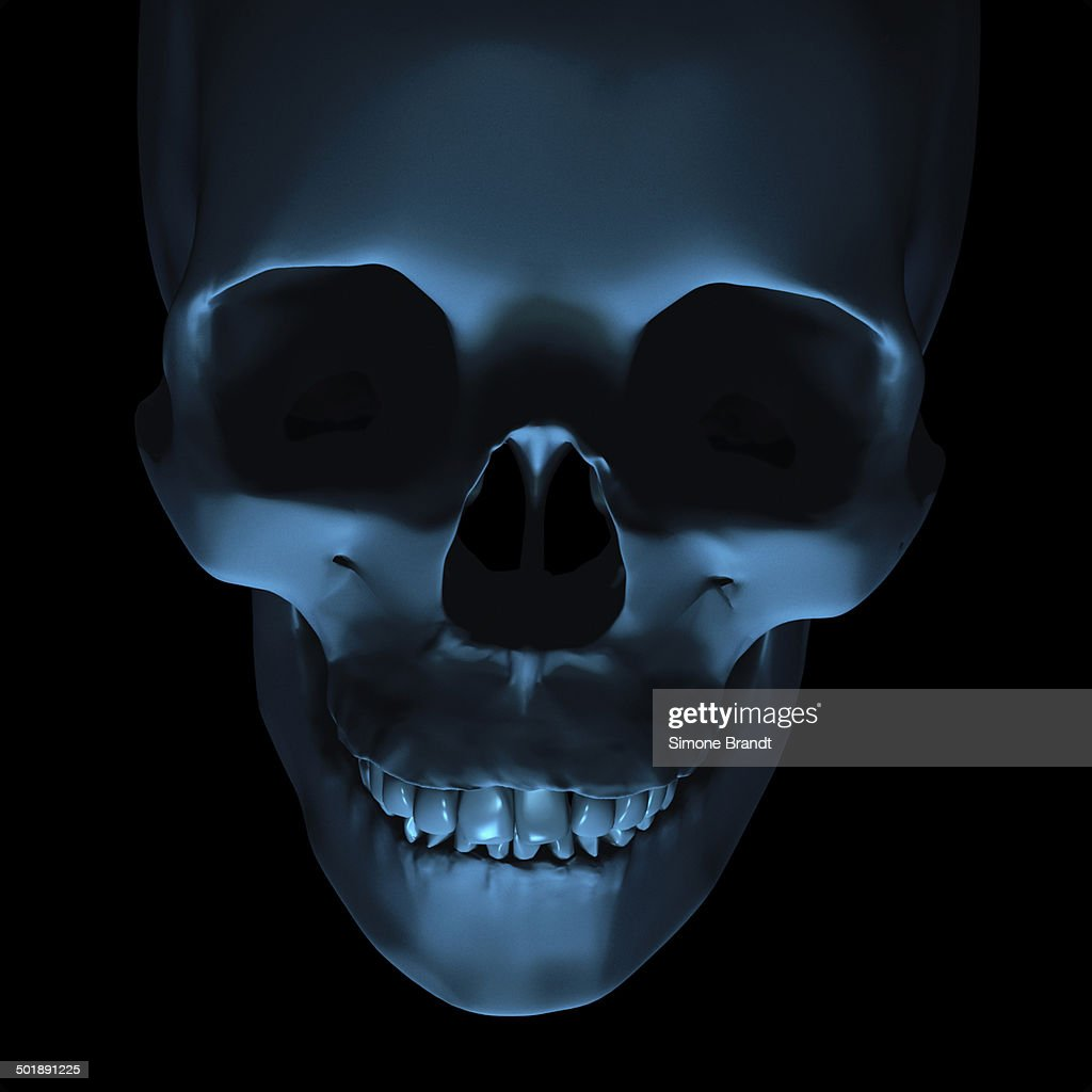 Creepy Skull 3d Illustration stock illustration - Getty Images