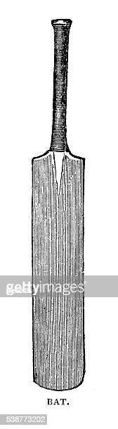 cricket bat - cricket bat stock illustrations