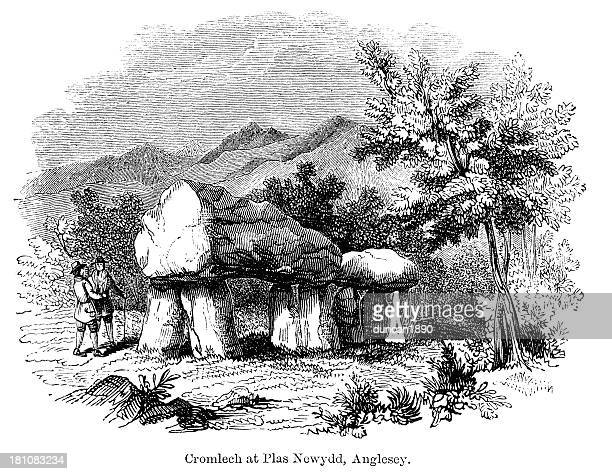 cromlech, plas newydd, anglesey - megalith stock illustrations, clip art, cartoons, & icons
