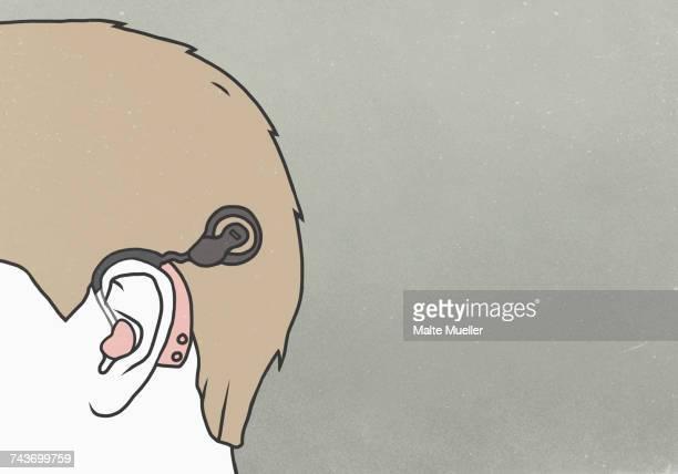 ilustraciones, imágenes clip art, dibujos animados e iconos de stock de cropped image of man wearing hearing aid against colored background - oreja
