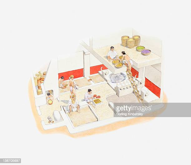 illustrazioni stock, clip art, cartoni animati e icone di tendenza di cross section illustration of recreation of neolithic town from the excavations carried out at catal huyuk - paleolitico
