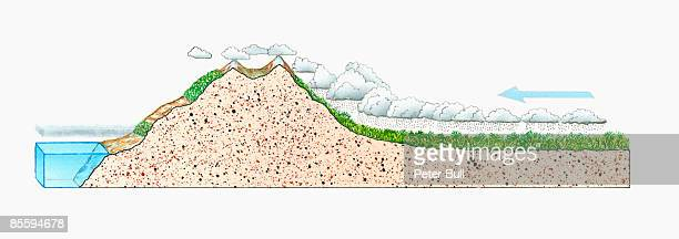 Cross section illustration of storm clouds above rainforest, cumulus clouds moving up to snow covered Andes mountain peak, and clouds above sea