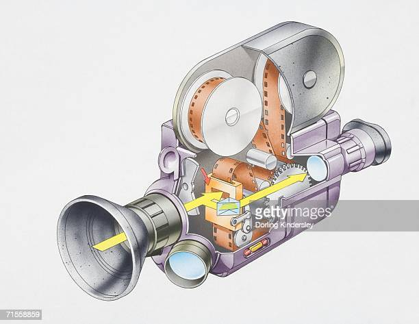 cross-section diagram of a cine camera. - cutaway drawing stock illustrations