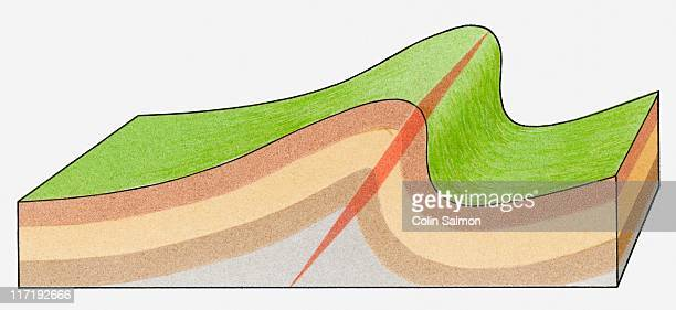 ilustraciones, imágenes clip art, dibujos animados e iconos de stock de cross-section illustration of a fold in the rock strata of the earth - corteza terrestre