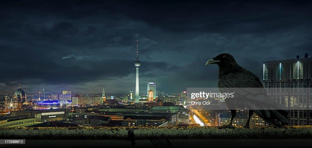 Crow overlooking cityscape, Berlin, Berlin, Germany : stock illustration