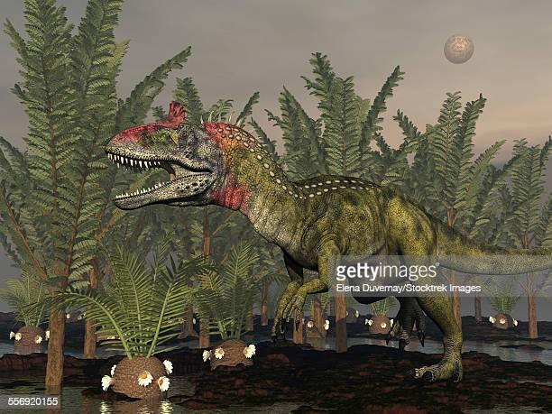 Cryolophosaurus dinosaur walking amongst pachypteris trees and cycadeoidea plants.