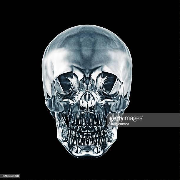 Crystal human skull against black