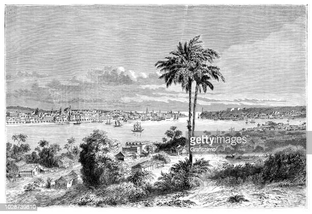 cuba havana aerial view of city illustration 1860 - cuban culture stock illustrations, clip art, cartoons, & icons