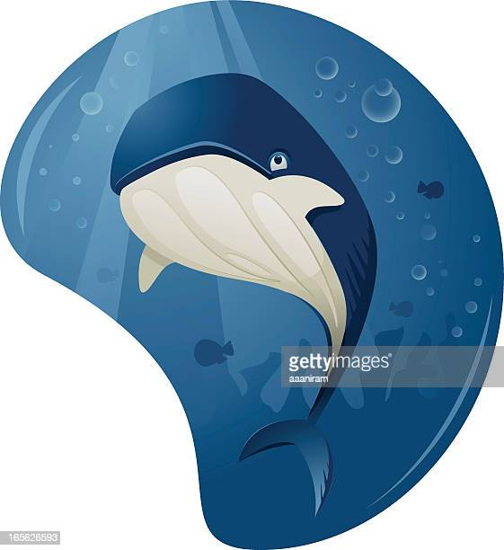 cute whale - blue whale stock illustrations, clip art, cartoons, & icons