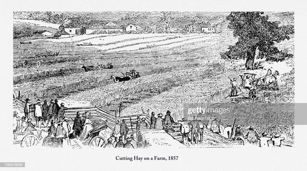 Cutting Hay on a Farm, Early Americans Engraving, 1857 : stock illustration