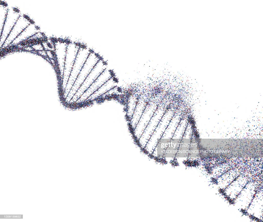 DNA damage, conceptual illustration : stock illustration