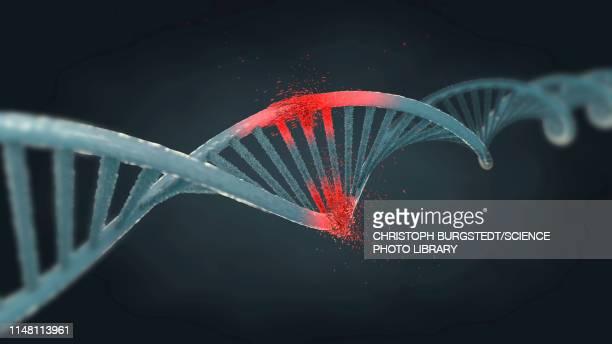 damaged dna molecule, illustration - damaged stock illustrations