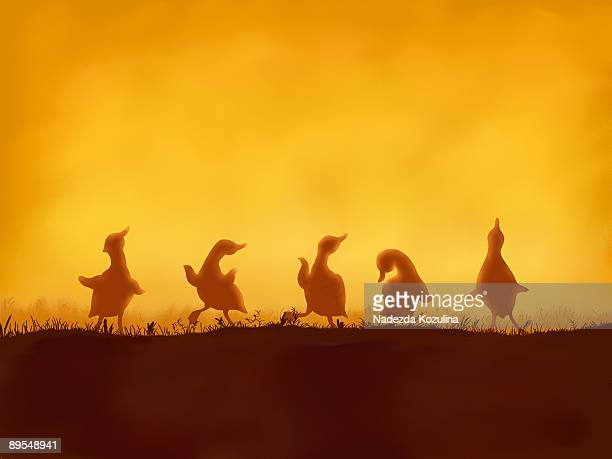 dancing dacklings - in a row stock illustrations