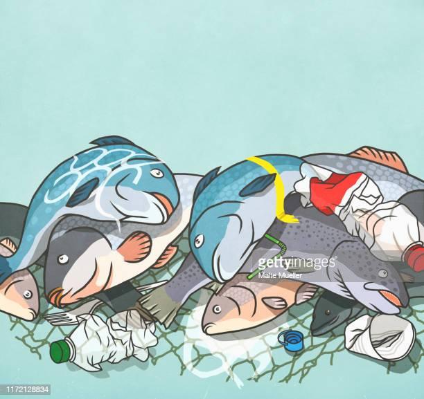 dead fish and plastic bottles caught in netting - plastic stock illustrations