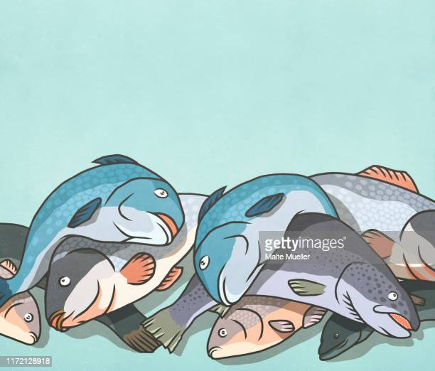 dead fish in a pile - stack stock illustrations