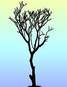 Dead Tree at Dusk (Vector)