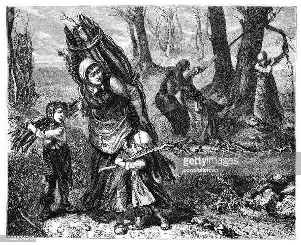 deadwood harvest by clément-auguste andrieux-19th century - driftwood stock illustrations