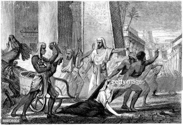 death of hypatia of alexandria (c 370 ce - march 415 ad) - renaissance stock illustrations
