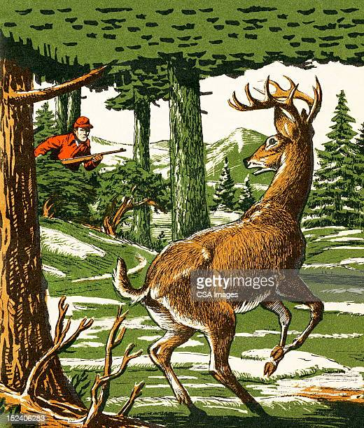 Deer and Hunter in the Woods