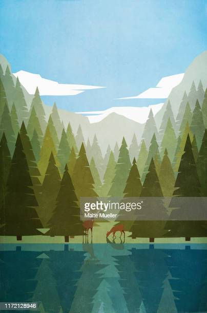 deer grazing at forest lakeside - silence stock illustrations