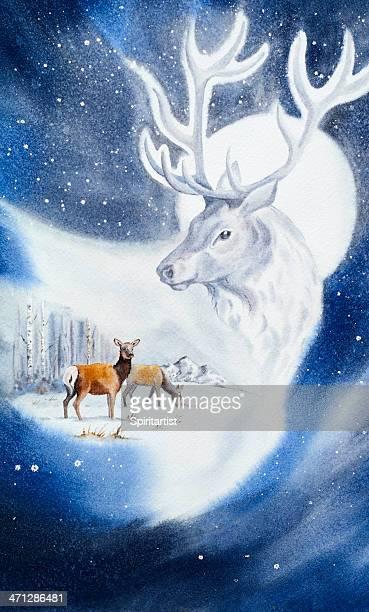 illustrations, cliparts, dessins animés et icônes de deer bel individu étrange - biche